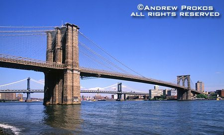 A view of the Brooklyn Bridge from Manahttan, New York City