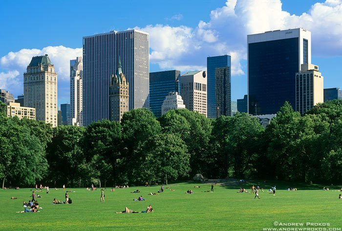 View of Midtown Manhattan from Sheep's Meadow lawn in Central Park.