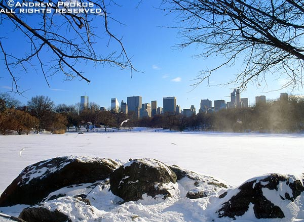 A Winter Central Park landscape with the Lake frozen under a blanket of snow
