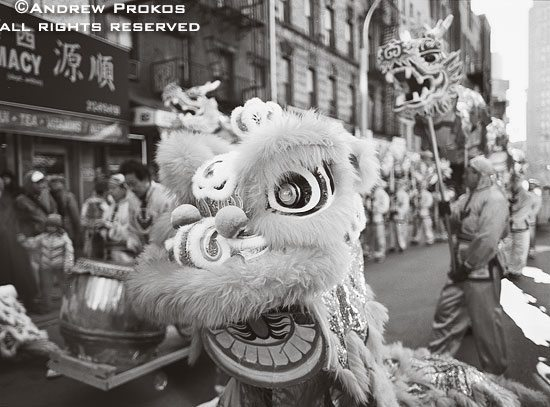 A man wearing a dragon costume during Chinese New Year festivities in Chinatown, New York City