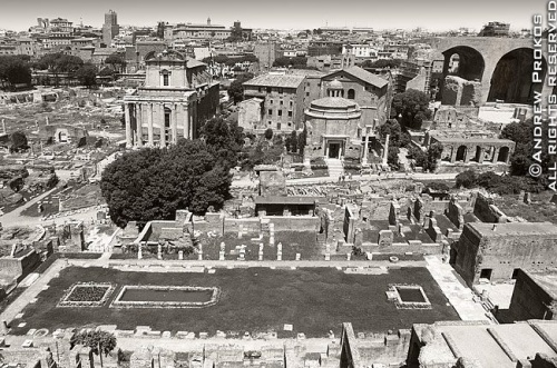 view of roman forum black white