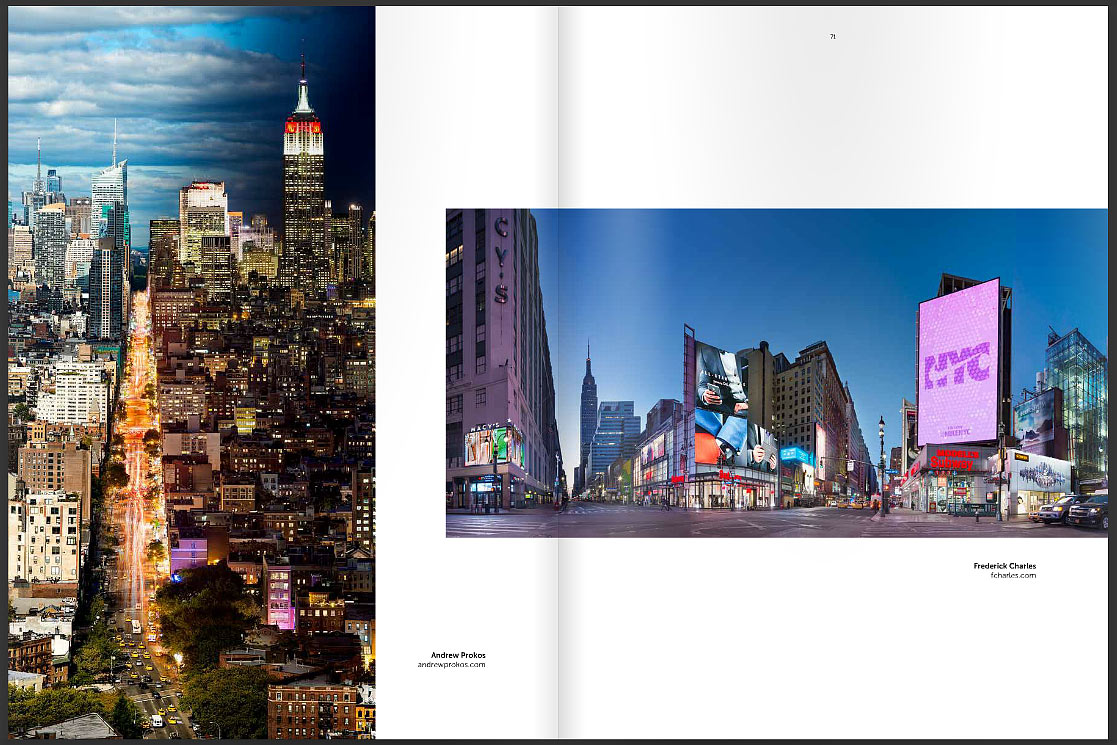 ASMP New York 2016 Photo Annual - Andrew Prokos