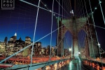 BBRIDGE CABLES NIGHT PX