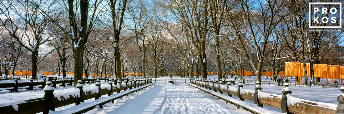 A panoramic view of snow covered benches in Central Park in Winter