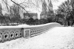 A black and white panoramic view of Central Park's Bow Bridge in Winter, New York City