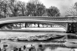 CENTRAL PARK BOW BRIDGE SNOW BW PX