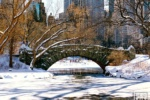 central park bridge snow