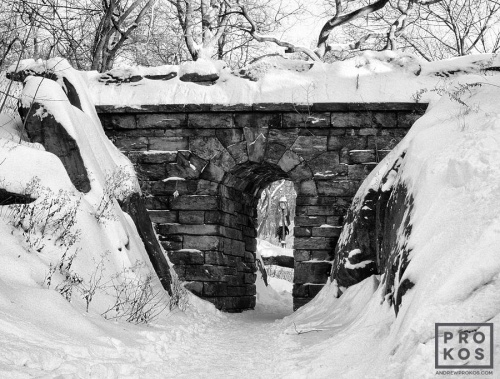CENTRAL PARK STONE ARCH BW PX