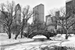 GAPSTOW BRIDGE WINTER CENTRAL PARK PX