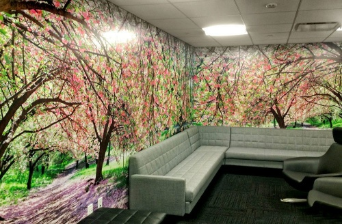 Wall mural of Central Park in Spring by photographer Andrew Prokos
