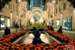 ROCKEFELLER CENTER NIGHT FLOWERS PX