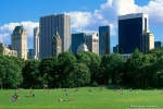 A view of Midtown Manhattan from Sheep's Meadow lawn in Central Park.