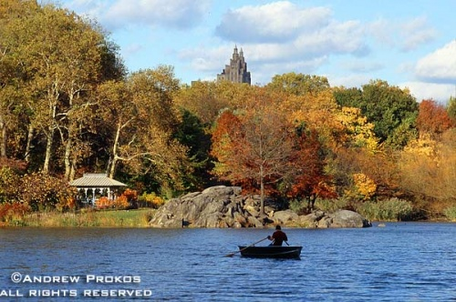 A view of Central Park's Lake in Autumn, New York City