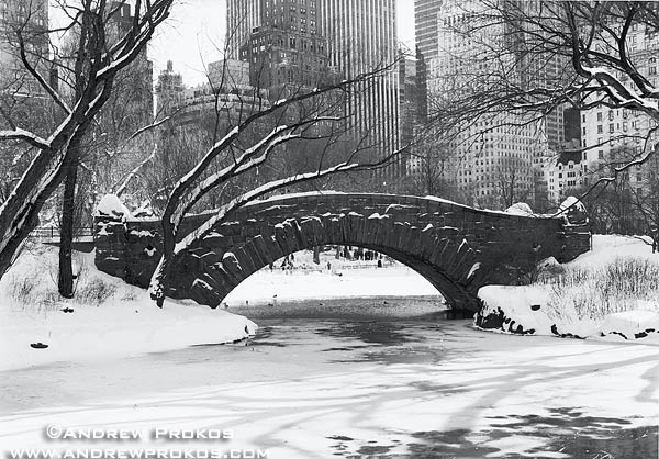 A black and white view of Gapstow Bridge in Winter, Central Park
