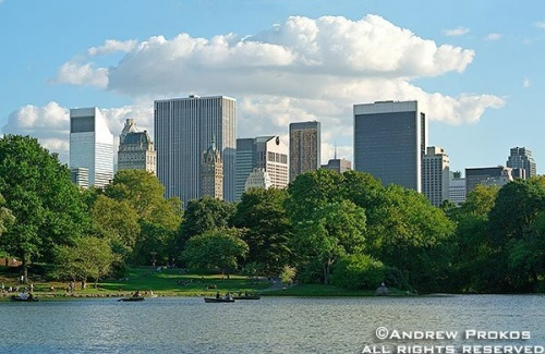 Midtown Manhattan's skyline as seen from the lake in Central Park, New York City -