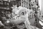 chinese new year nyc