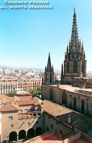 A view of Barcelona Cathedral from the Palau Real