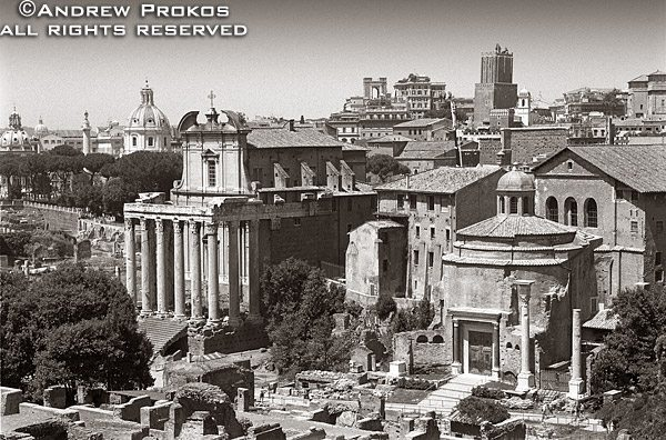 A view of the ancient Roman Forum in black and white, including the ancient Senate and the Temple of Antoninus and Faustina (currently the Church of San Lorenzo in Miranda), Rome, Italy