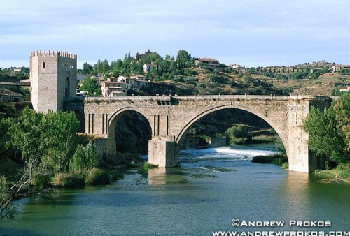 A view of the bridge of San Martin, Toledo, Spain