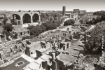 roman forum panoramic view black white
