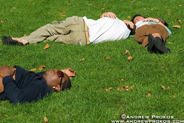 People nap on the grass on a warm late summer day in Bryant Park