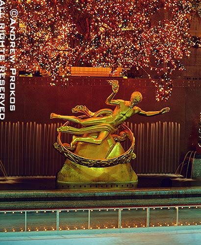 Rockefeller Center's famous statue of Prometheus under lighted Christmas tree