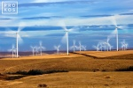 A landscape photo of a field of wind turbines in motion at the Biglow Canyon, Oregon wind farm