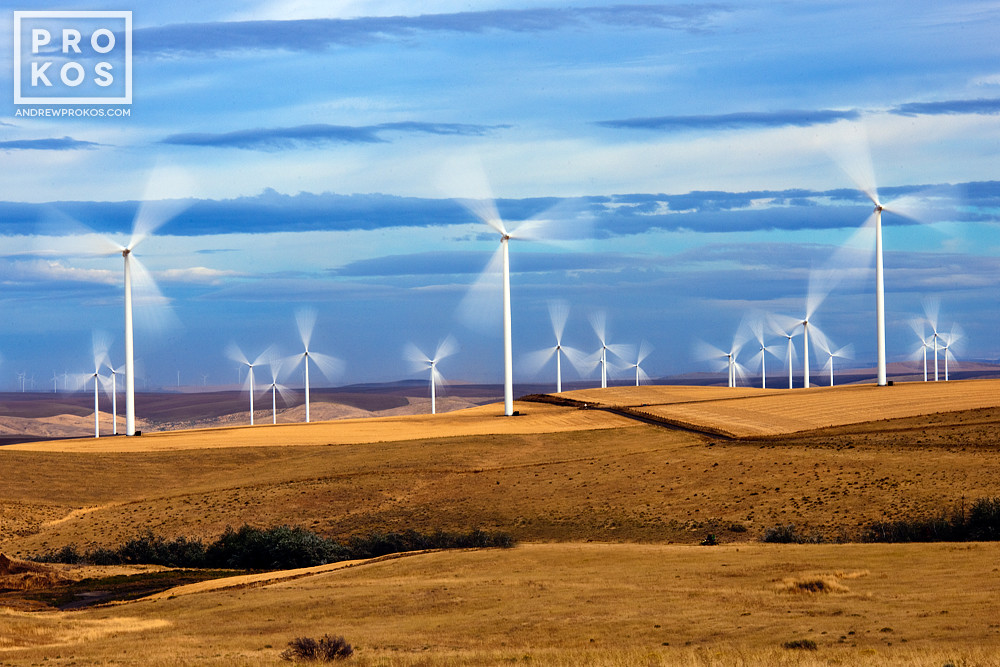 A field of wind turbines in motion at the Biglow Canyon, Oregon wind farm
