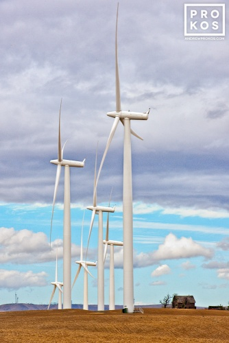 Wind turbines in Oregon's Biglow Cayon wind farm