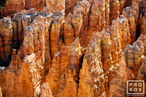 A landscape photo of the colorful Hoodoos (rock pinnacles) in Bryce Canyon, Utah