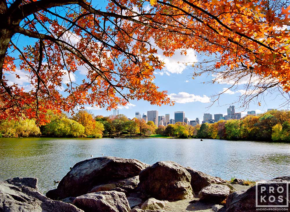 A landscape photo of the Lake in Central Park in Autumn, New York City
