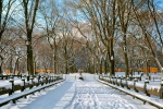 A color panoramic landscape photo of the snow-covered benches in Central Park in winter. High-definition fine art prints of this photo are available up to 120 inches wide.