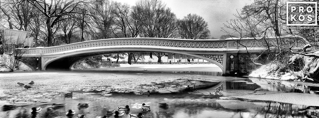 A black and white panoramic landscape photo of Central Park's Bow Bridge in Winter. 