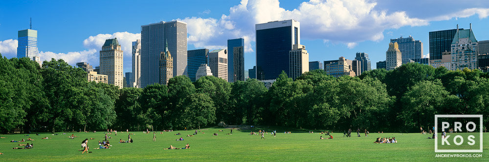A panoramic view of Midtown Manhattan from the lawn at Sheep's Meadow in Central Park, New York City
