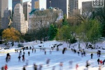 A color landscape photo of the ice skaters at Wollman Rink in Central Park in Winter, New York City