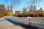 A high-definition landscape photo of Central Park's Bow Bridge in Autumn, New York City