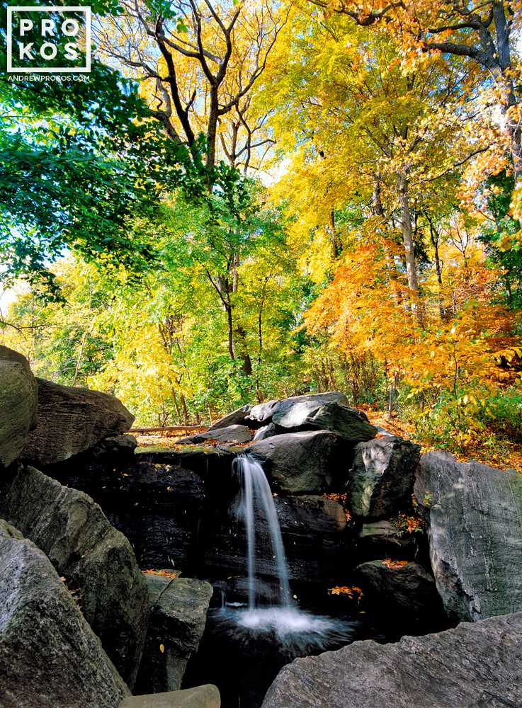 A high-definition landscape photo of a waterfall surrounded by colorful Autumn foliage at the Loch in Central Park, New York City