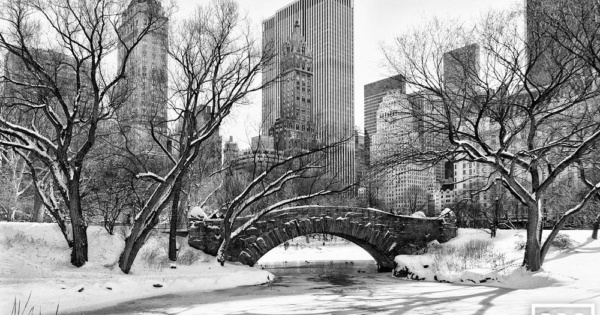 Gapstow Bridge and Pond in Winter, Central Park