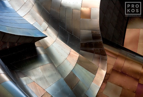 A fine art architectural photo from Andrew's award-winning series Gehry's Children