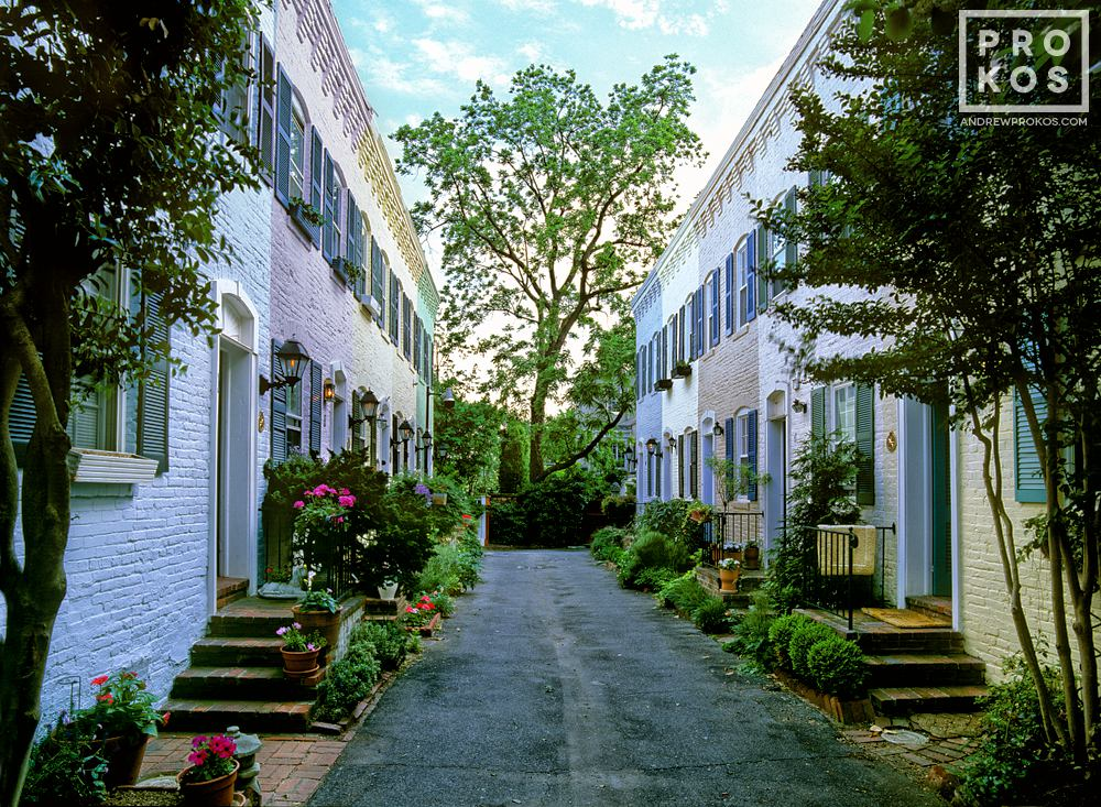 A fine art photo of Pomander Walk, a historic row of ten 19th century houses in Georgetown, Washington DC