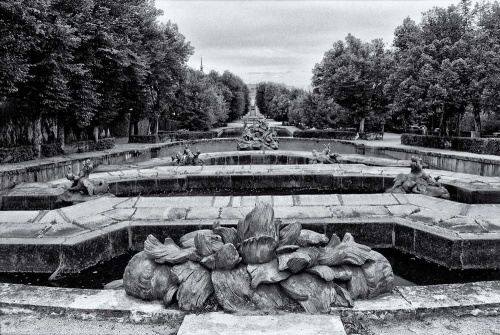 A black and white landscape photo of the fountains in the gardens of the Royal Palace at La Granja de San Ildefonso, Spain