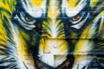 Photo of a New York City street mural showing the face of a tiger