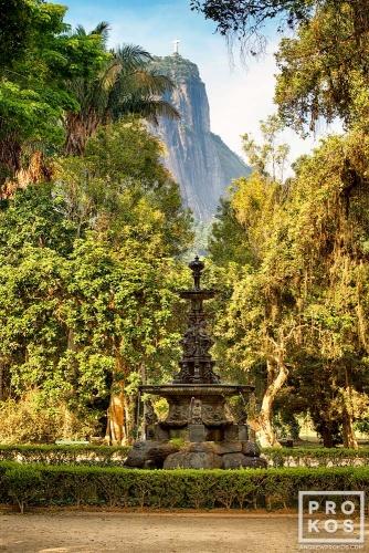 A landscape with fountain in Rio de Janeiro's Jardim Botanico. Uma paisagem com fonte no Jardim Botânico do Rio de Janeiro.
