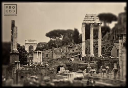 "Ancient ruins in the Roman Forum, including the temples of Castor and Pollux, the temple of Venus, and the Arch of Septimus Severus. From the monochrome photo series ""Forum Romanum""."