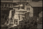 "A view of the Senate in the ancient Roman Forum from the monochrome photo series ""Forum Romanum""."