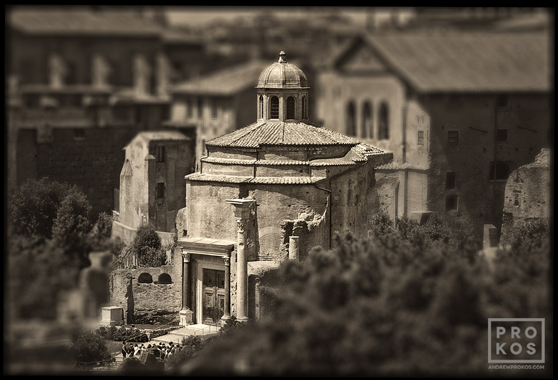 "A view of the building which housed the Senate of the ancient Roman Empire. From the series of monochrome limited edition prints entitled ""Forum Romanum"""