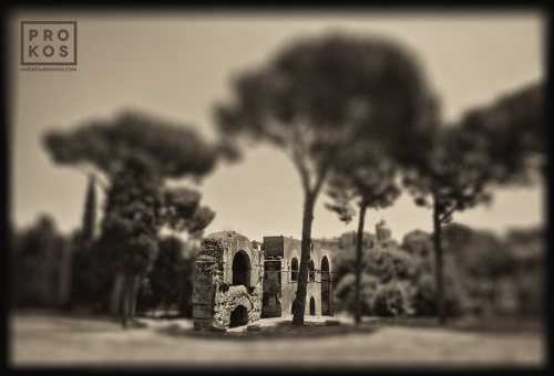 "A ruin on the Palatine Hill in the ancient Roman Forum. From the monochrome photo series ""Forum Romanum"""