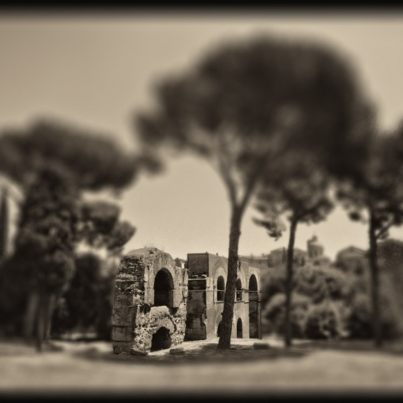 A ruin on the Palatine Hill in the ancient Roman Forum. From the monochrome photo series