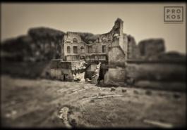 Forum Romanum - Domus Augustana