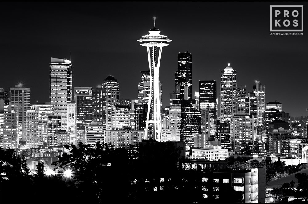 View of the seattle skyline at night bw